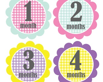 Baby Stickers, Monthly Stickers, Baby Shower or Baby Gift, BABY GIRL,  12 months, Gingham Flowers-AVA