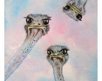 """Limited Edition Prints of Curious Ostriches """"Piqued"""""""
