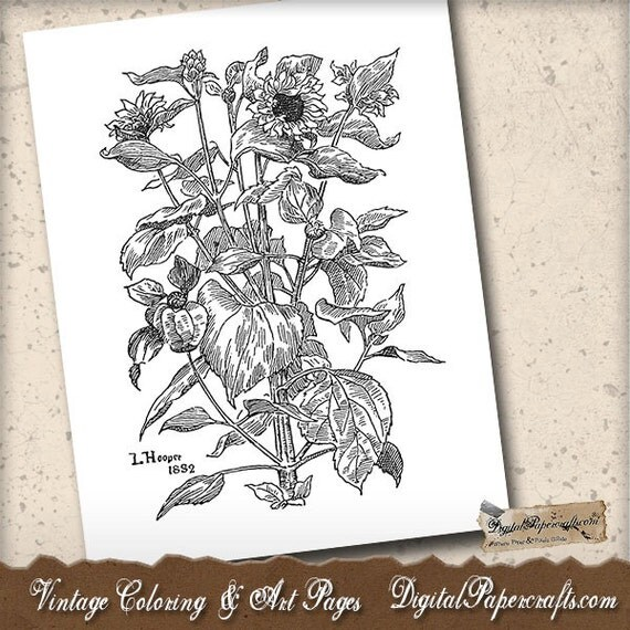 cassic art coloring pages - photo#35