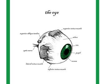 The Eye Greetings Card