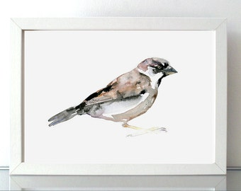 Sparrow Art - Sparrow Watercolor Painting - Giclee print - Animal painting - Sparrow watercolour drawing - Zen drawing ink