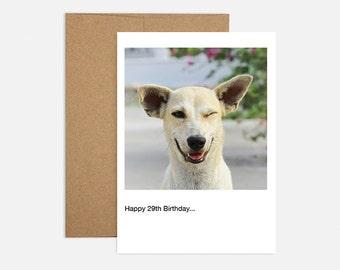 Wink, Wink Birthday Greeting Card