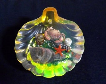 Vintage resin paperweight Resin encapsulated paperweight Bathroom decoration Encapsulated seashore items Real crab Starfish and shells