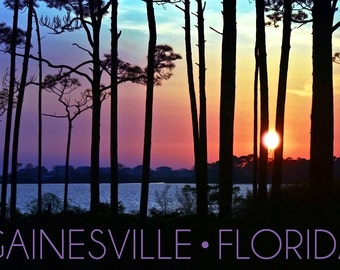 Gainesville, Florida - Sunset and Silhoutte (Art Prints available in multiple sizes)