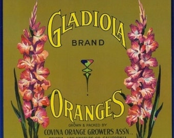 Gladiola Brand Citrus Crate Label - Covina, CA (Art Prints available in multiple sizes)