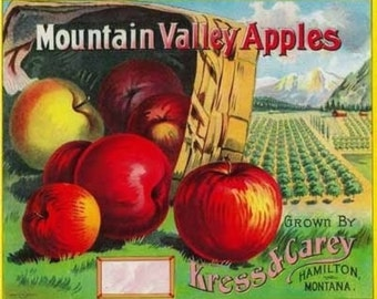 Mountain Valley Apple Label (Art Prints available in multiple sizes)
