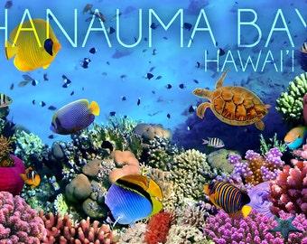 Hanauma Bay, Hawai'i - Fish and Coral 3 (Art Prints available in multiple sizes)