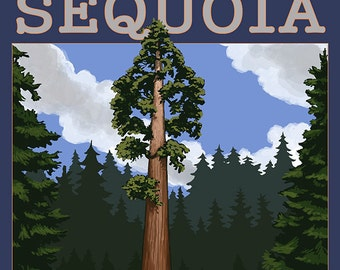Sequoia National Park - Sequoia Tree and Palisades (Art Prints available in multiple sizes)