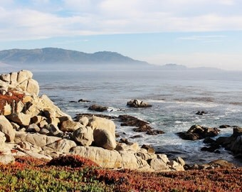 Along the 17 Mile Drive to Pebble Beach, CA