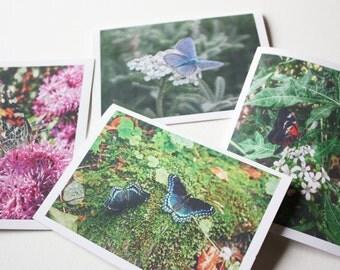 Blank Note Cards - Butterflies - Set of 4