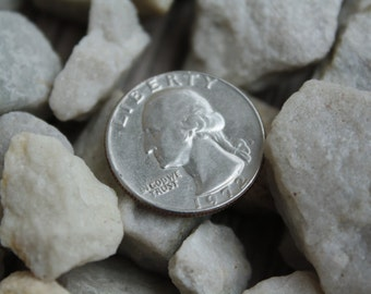 Free Shipping! Eight Ounces Of White Rocks For Terrariums From Pennsylvania. Great For Terrariums, Decorations, And More