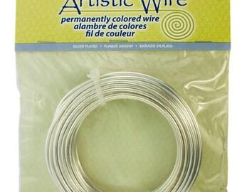 Artistic Wire Coil Bag SP Silver 10ga 25 feet (WR36010)