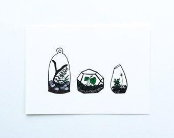 Terrarium Print, Terrarium Art Print, Terrarium Gift, Plant Print