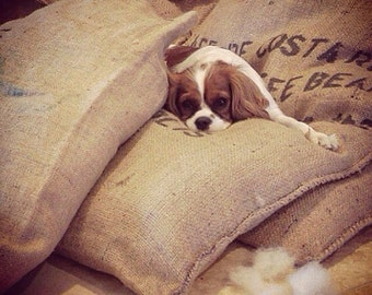 Large burlap coffee bag dog bed