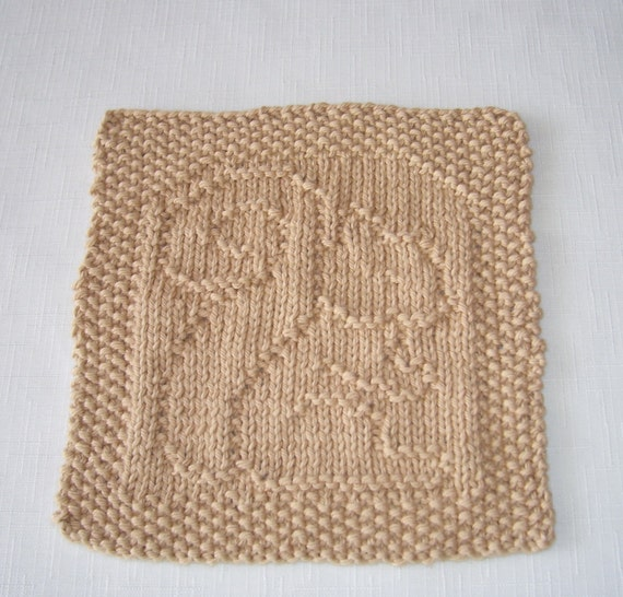 Dishcloth Washcloth Fall Colors and Design Squirrel Hand