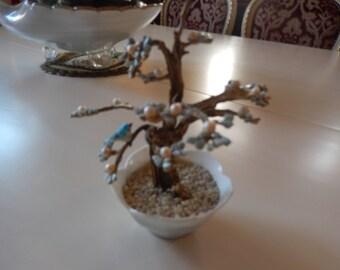 JAPAN JEWEL TREE