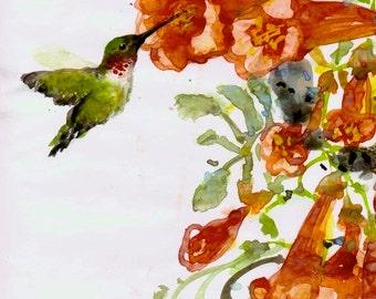 Art Print, Chinese Brush Painting, Hummingbird and Red Trumpet Vine