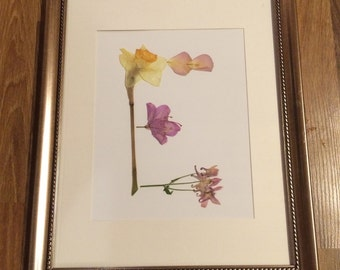 E Monogram Pressed Flower Picture - 11x14