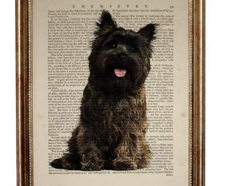 Cairn Terrier Dog, beautiful Art Print on Upcycled Dictionary Book page 8'' x 10'' inches