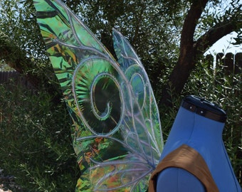 Medium/Large Tinkerbell Inspired Iridescent Fairy Wings