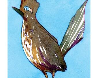 State Birds - Roadrunner