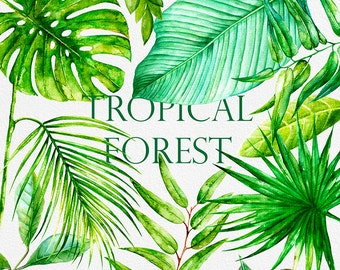 Watercolor Tropical Bright Leaves. Handpainted clipart, Foliage, Green leaf, Tropic, Wedding invitation, separate elements, greeting, DIY