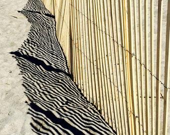 Beach Photography - Landscape Photography - Cape Cod Photography - Summer Photography - Sand - Fence - Shadows