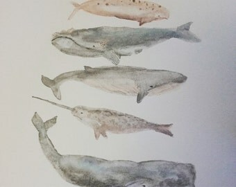 "Whimsical whales (8 x 10"" print)"