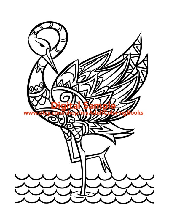 Flamingo coloring page for adults flamingo adult coloring for Flamingo coloring pages