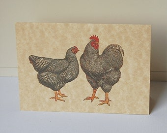 Chicken Note Cards, Blank Note Cards Set, All Occasion Cards, Thank You Cards, Rooster Note Cards, Chicken Cards, Note Cards