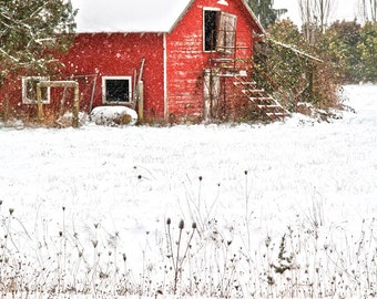 Red Barn in Snow Photograph 8x12 Print in 11x14 White Matte by Jackie Miles