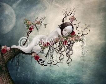 Sleeping Beauty - Fairytale Art Print