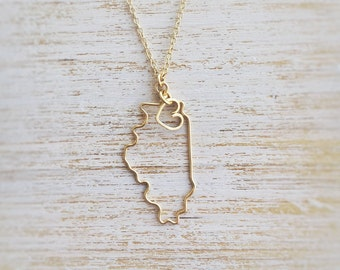 Illinois Necklace - Custom State Love Necklace - Illinois State Necklace - Illinois Outline - Personalized Gift - Silver or Gold