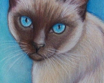 Original Siamese Cat Art Colored Pencil Drawing Painting