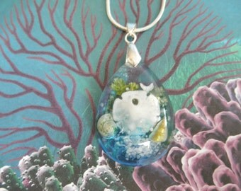 Sand Dollar & Dove,  Sea Shells, Beach Sand, Frosted Ferns-Spiritual-Zen Glass Teardrop Dimensional Pendant-Ltd Edition-Gifts Under 35