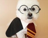 Harry Potter Dog costume- halloween dog costume- halloween pet