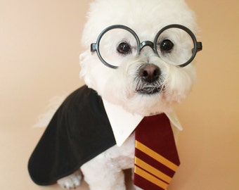 Dog costume Harry Potter inspired- halloween dog costume- halloween pet