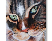 Nine Lives - Original Painting   Hyper Realistic   Cat Painting   T.GRIFFITHS 2015