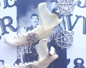 Raccoon Jaw Bone Necklace- Death Renewed