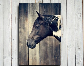 Paint Horse Head - Horse decor - Horse art - Animal photography - Horse photography - Equine decor - Black and white horse