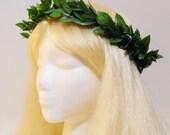 Green Leaf Crown for a Greek, Roman Goddess, Laurel Wreath, Headpiece, Grecian, Athena, Toga, Leaf Hair Garland, Greek God, Man, Woman, Girl