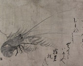 Antique Japanese Fine Art Wall Hanging Scroll Painting Inkwash Lobster Sea Creature – 1506011