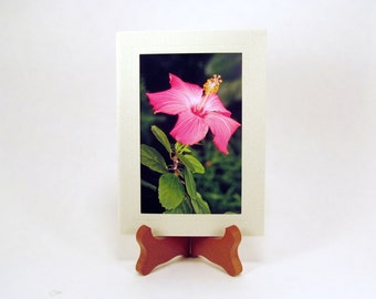 Hibiscus Flower, Blank Photo Card and Envelope, Blank Note Card, FI0099