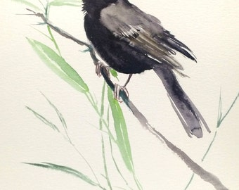 Blackbird, Original watercolor painting, 9 X 12 in, blackbird art