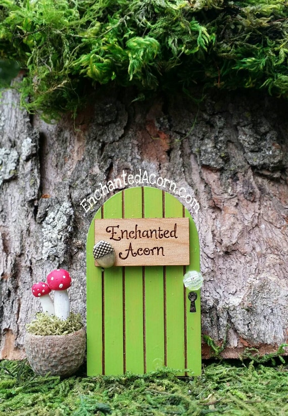 Tiny acorn fairy garden door enchanted acorn miniature fairy for Miniature fairy garden doors