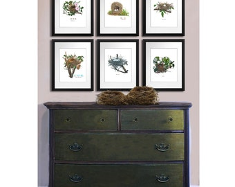 Gift for mom, Spring Decor Vintage Bird Nest Prints Set of 6 Bird Egg Nursery Decor Wall Art prints 8x10 Shabby Chic Room Wall Decor