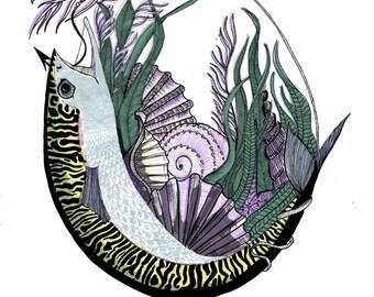Si's Mackerel Digital Print