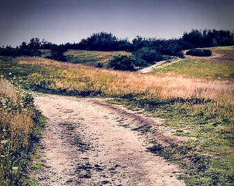 Moors Path Fine Art Photography, Trails, Hiking, Nature, Calm, Serene, Landscape, Fields, Meadow, Nantucket, Cape Cod, Wall Art, Home Decor