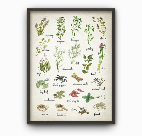 Herbs And Spices Watercolor Kitchen Wall Art By QuantumPrints