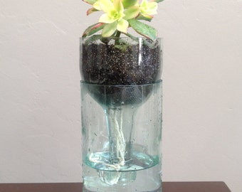 Wine Bottle Self Watering Succulent Planters